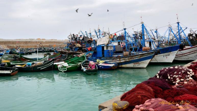 مرة أخرى منطق المحسوبية والزبونية يحكم منظمي مهرجان البحر بأسفي
