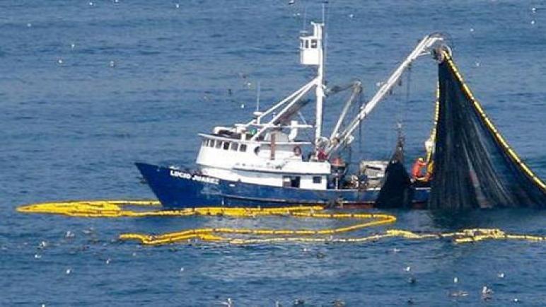 الصيد البحري بالمغرب المشاكل والصعوبات