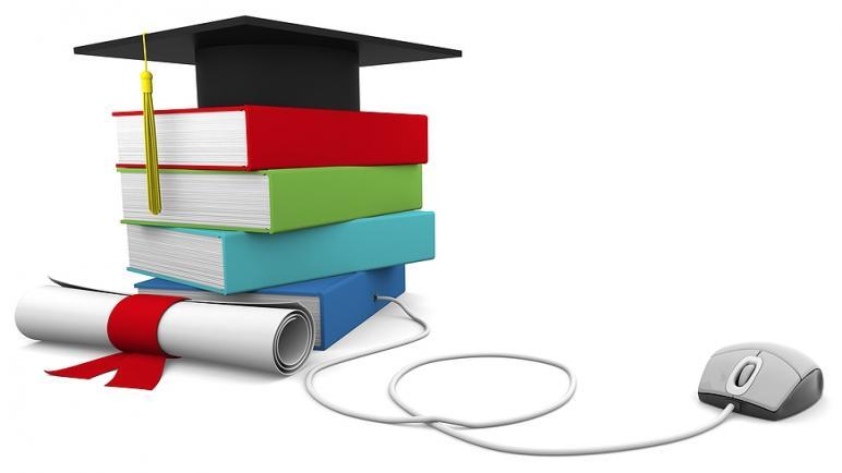 كارثة التعليم الخاص