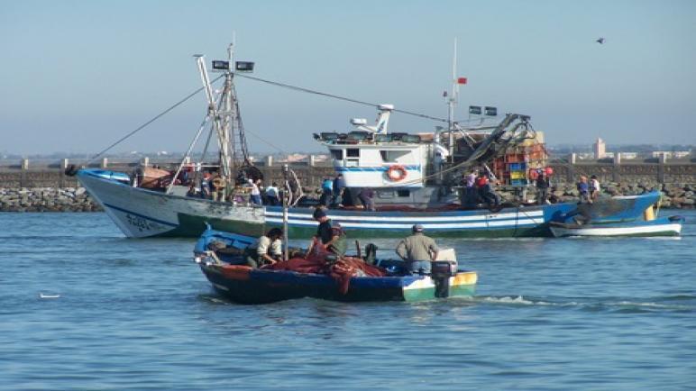 الصيد البحري أحد أقدم مهن الساحل